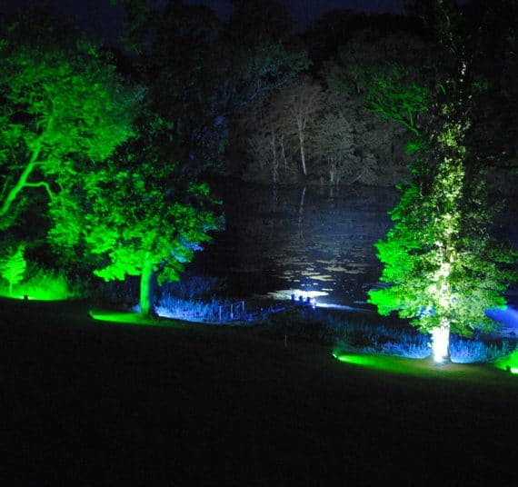 Carnival 21st birthday party planned - amazing lighting