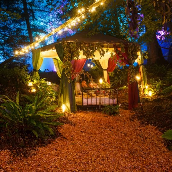 Enchanted Forest party planned - tent decorated for party