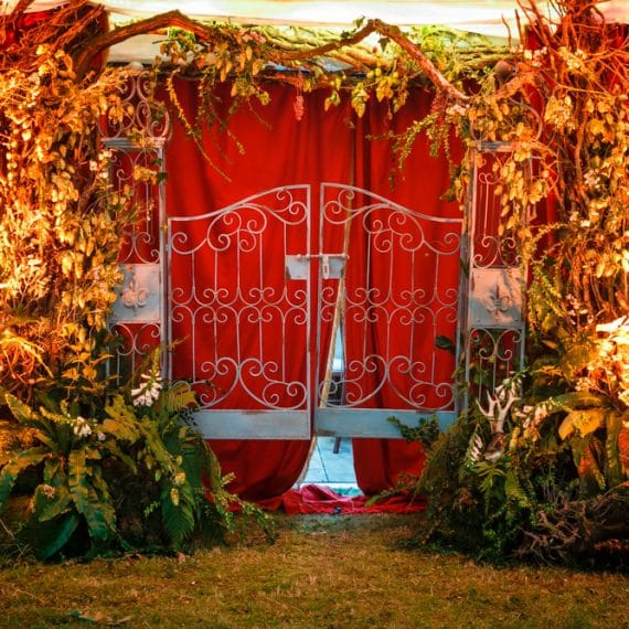 Enchanted Forest party planned - stunning entrance