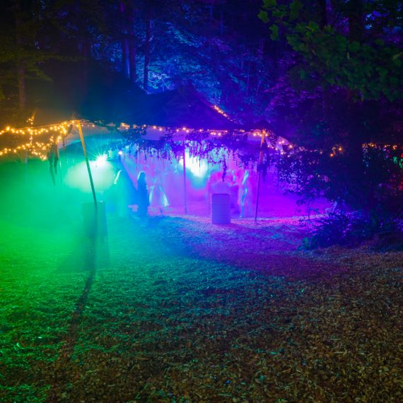 Enchanted Forest party planned - stretch tent lighting