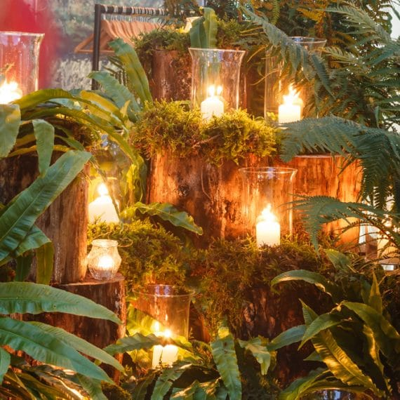 Enchanted Forest party planned - storm lanterns and foliage