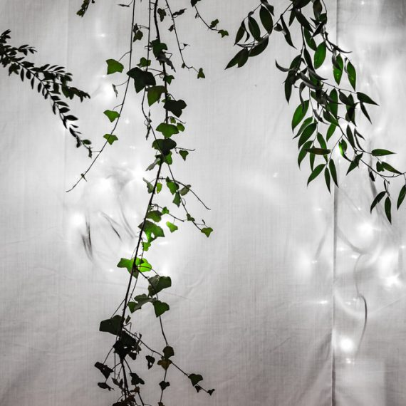 Enchanted Forest party planned - white flat marquee lining and foliage