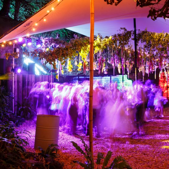 Enchanted Forest party planned - stretch tent foliage and guests