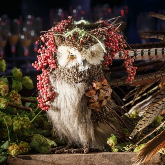 Enchanted Forest party planned - owl watching over you