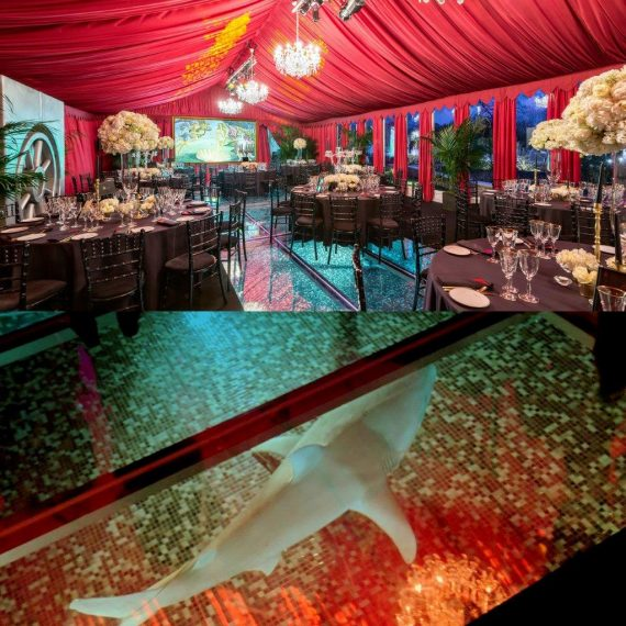 Marquee over a pool with clear floor and a shark prop