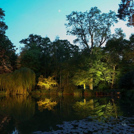 The garden looked beautiful reflected in the lake