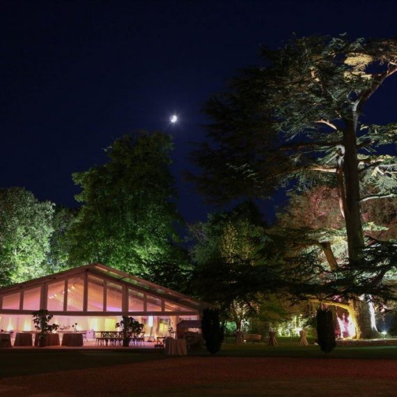 Guests had gone through to dinner; the garden looked stunning